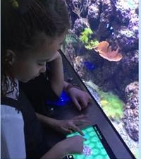 Year 4 visit The Deep