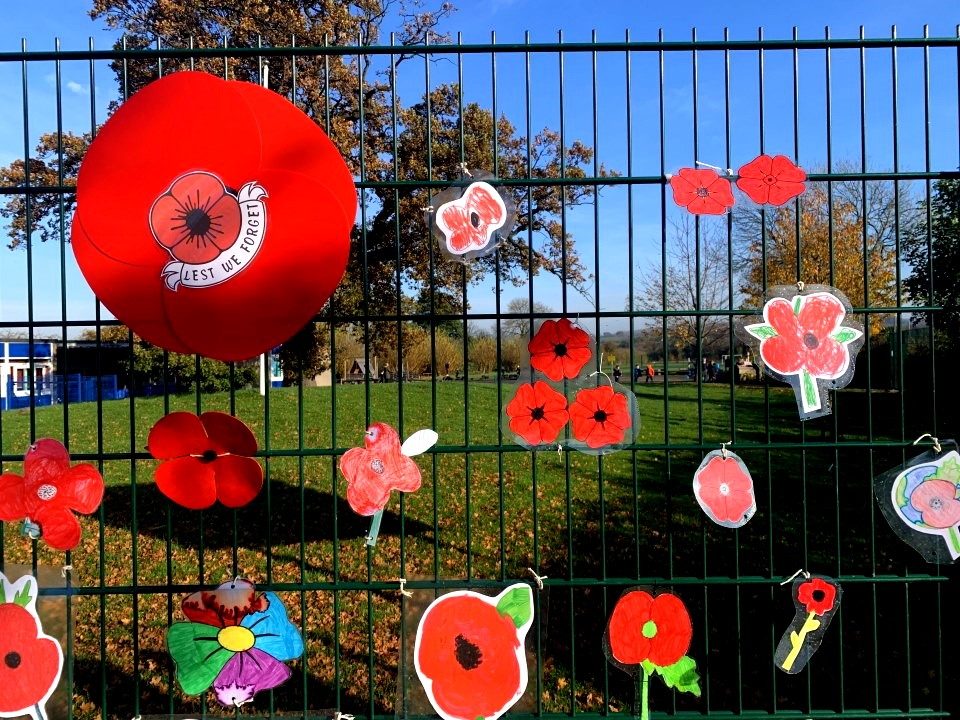 Creative tributes for Remembrance Day
